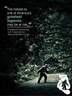 Loss of Space Threatening North American Sasquatch - http://scienceblog.com/77596/loss-of-space-threatening-north-american-sasquatch/