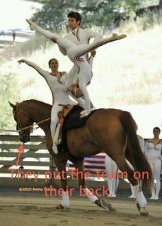 gymnastics on a horse @Nicole Novembrino Novembrino Finch