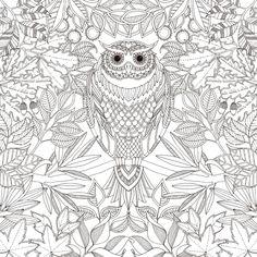 Secret Garden Johanna Basford Coloring Book Page
