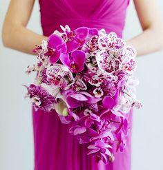 Radiant orchid ~  Fleur le Cordeur