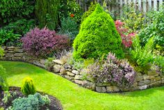 Top Garden Designs Ideas Pictures & Plans for 2013