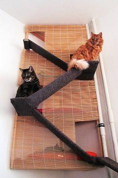 Idée pour arbre a chat