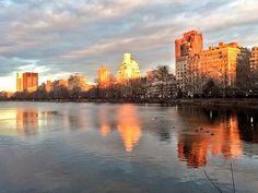 New York ❤️ Central Park, New York Sites, New York Skyline, Nyc, Travel, Twitter, New York City, Viajes, Destinations