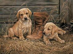 A593706656: Something Old Something New-Yellow Lab Puppies Painting by Rosemary Millette