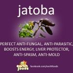 JATOBA BENEFITS | MASTER ANTI-FUNGAL, ANTI-MOLD, & LIVER PROTECTOR