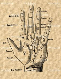 Fortune Teller Palmistry Hand Digital Image Transfer for Pillows Cards Notebooks… Magic Symbols, Symbols And Meanings, Ancient Symbols, Hand Symbols, Symbole Tattoo, Palm Reading, Palmistry, Book Of Shadows, Runes