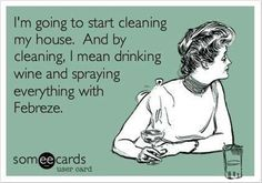And by spraying everything with Febreeze, I mean sitting on my ass drinking wine. It's Saturday!