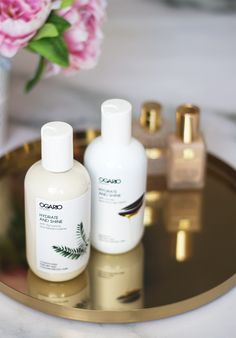 Dry, brittle and frizzy hair? Here are two products that will fix everything. I've been dying my hair since I was about 12 years old including bleaching it a few times and it's probably been just abou
