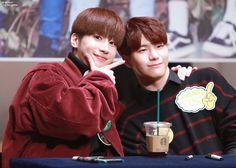 Seungwoo & Seungsik