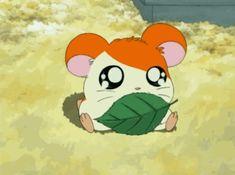 Mundo Otaku: Los Gifs Animados más Kawaii