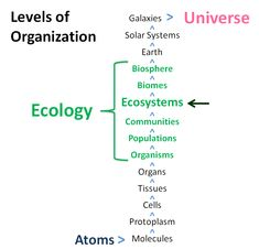 Levels of organization of Ecology, highlighting ecosystems. (Credit: Erle Ellis)