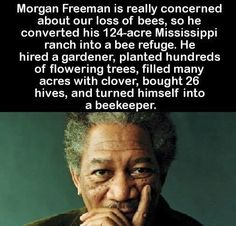 Morgan Freeman - helping the world as a BEEKEEPER! Hats off to you, Morgan! Weird Facts, Fun Facts, Alternative Energie, Raising Bees, Save Our Earth, Human Kindness, Morgan Freeman, Faith In Humanity Restored, Save The Bees