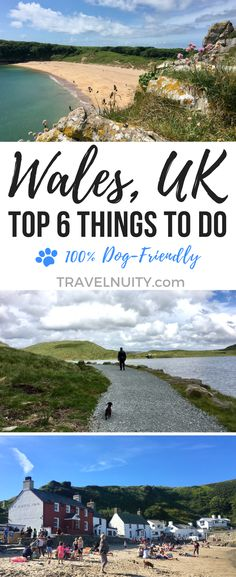 6 Dog-Friendly Things to Do in Wales Between its beautiful scenery and rich history, there's so many things to do in Wales on a holiday trip. And even better, many of the best attractions are dog-friendly. Holiday Trip, Holiday Travel, Holiday Ideas, Europe Destinations, Europe Travel Tips, Dog Travel, Family Travel, Travel Uk, Dog Friendly Holidays