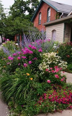 """Great """"hellstrip"""" bed. (A """"Hellstrip"""" is the area often found between the sidewalk & curb, which can be a difficult area to plant.) Pink petunias, pink echinacea, yellow daylilies, white tanacetum, pink phlox, and russian sage"""