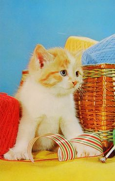 Beau petit chaton. Vintage Cat, Postcards, Painting, Little Kitty, Kitty, Wild Animals, Dog, Cards, Red Heads