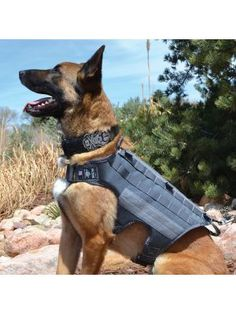 GHOST Series - Ultimate Dog Harness