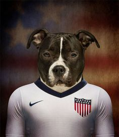 Native Dogs Represented as World Cup Soccer Players - #johnpaulpet #worldcup #pets