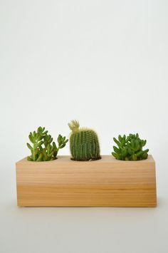 Wood Succulent Planter - handmade in America
