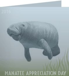 30 March 2016, Barbara, thank you for taking action on manatee appreciation day. ''Love the manatee and save the manatee.'' ~ John Lithgow