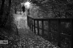 chasing shadows... by Roman Bilan on 500px