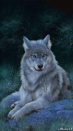 animated image - Wolf