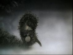 Ежик в тумане. Юрий Норштейн