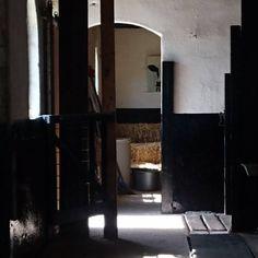 Jacky Vandenboom Rembrandt, Candle Sconces, Nars, Oversized Mirror, Wall Lights, Candles, Lighting, Home Decor, Kunst
