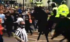 (Gif) this is why you don't punch a police horse.