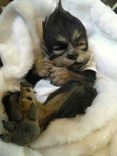 Werewolf baby