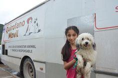 Rosario de Lerma: vuelven las castraciones de mascotas: Iniciarán operativo gratuito en la localidad desde el 5 de julio. #Salta…