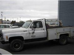 1980 Chevrolet Custom