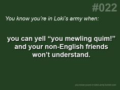 You Know You're In Loki's Army When...