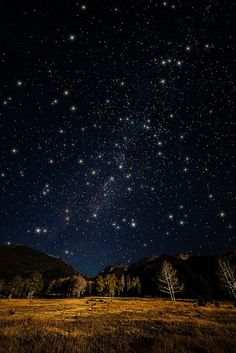'Night of Draconids, Rocky Mountain National Park, Colorado' - ✨twinkle, twinkle little stars