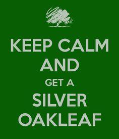Get a silver oakleaf. *srs nod*