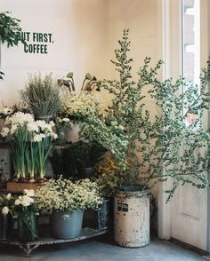 Shelves of greenery and flowers