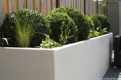 Kleine tuin in Scandinavische sfeer te Rotterdam Overschie - XL bloembak-witte-bloembak-rechthoek-siergras-buxus-bollen-wintergroene-beplanting-modern-tuinontwerp-moderne-tuin