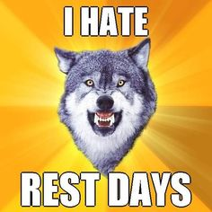 One man wolf pack and I have a love-hate relationship with working out