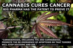 if it's only a schedule 1 drug and of no medicinal use ..why haven't you given up the patent you hold on it....would that mean the doctors and pharma wouldn't need all the other Rx drugs??