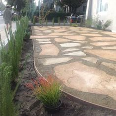 Atwater Village California native, drought tolerant, pavers ecosystem | Yelp