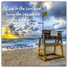 """Live in the sunshine, swim the sea, drink the wild air.""  — Ralph Waldo Emerson ✫*¨`*✶♪.¸¸.✻ღϠ₡ღ✻ ℒℴνℯ….ღ…Peace of the Beach…ღ  www.facebook.com/MariannesPeaceoftheBeach."