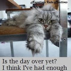is the day over yet?