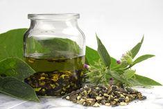Kostival lékařský je bylinka, kterou můžeme spatřit na loukách, okrajích lesa, na březích rybníků a řek nebo dokonce v příkopech. Obsahuje slizovité látky, silice, alkaloidy a třísloviny. V listech se nachází minerály (vápník, draslík, fosfor) a vitamíny (A, B12, C, cholin). Využívá se především díky svým protizánětlivým účinkům. Pro léčebné účely se používá kořen, který … Korn, Terrarium, Home Decor, Terrariums, Decoration Home, Room Decor, Home Interior Design, Home Decoration, Interior Design