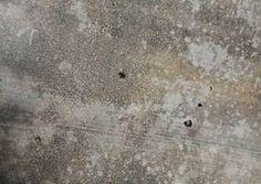 Concrete Texture 2 - http://www.dawnbrushes.com/concrete-texture-2/