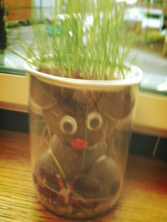 Actually being able to grow something, even if its only grass via @flutterbybat