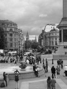 Trafalgar Square e la protezione dei leoni