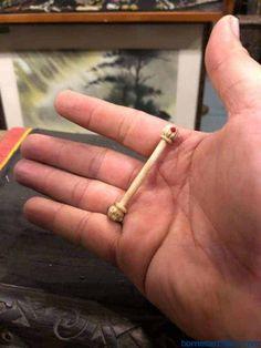 Piercing ampallang ✅ Piercing