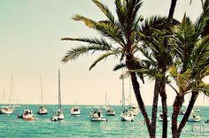 Catalina Island, CA #Catalina #Island #California