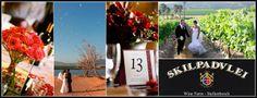 Skilpadvlei Wine Farm - Cape Town Wedding Venues Cape Town Wedding Venues, Dates, Wine, Table Decorations, Beautiful, Date, Dinner Table Decorations
