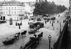 Boulevard du Botanique 1893