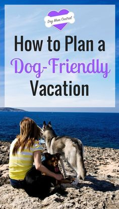 Here's exactly how to plan a vacation with your dog that you'll never forget. via @KaufmannsPuppy